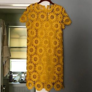 Loft Size 2 yellow sunflower shift dress with line
